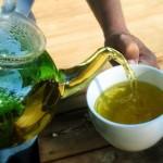 лечение на кашлица с билки