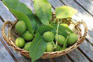 Лечебните тайни на листата и зелената обвивка на орехите
