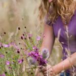 Събиране и на билки за домашни илачи