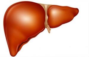 Билкови отвари при възпаление на черния дроб