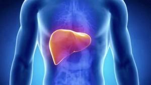 С експресното прочистване на черния дроб ще дадете нов живот на организма си
