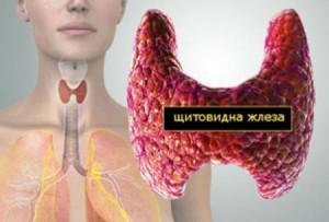 Болестите на щитовидната жлеза са на път да се превърнат в поредния бич на новото време